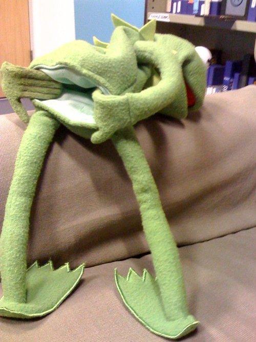 kermit's dedication inspires me
